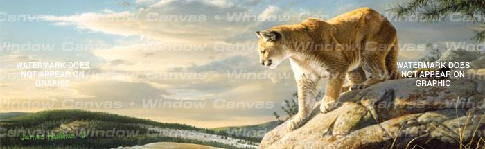 Vantage Point Cougar Rear Window Graphic - Custom Vinyl Graphics