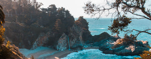 High angle photo of beach cove with blue water and trees Lazy Wombat