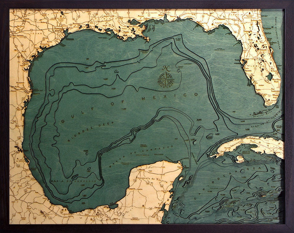 Tampa Topographic Map.Gulf Of Mexico Wood Carved Topographic Map Lake Art