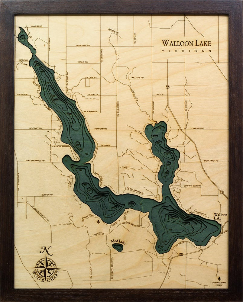 Walloon Lake, Michigan Wood Carved Topographic Depth Chart / Map