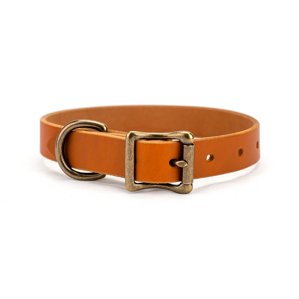 The Classic Leather Dog Collar Honey