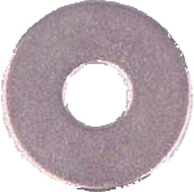 61616 5/16 S/S Washer(100)