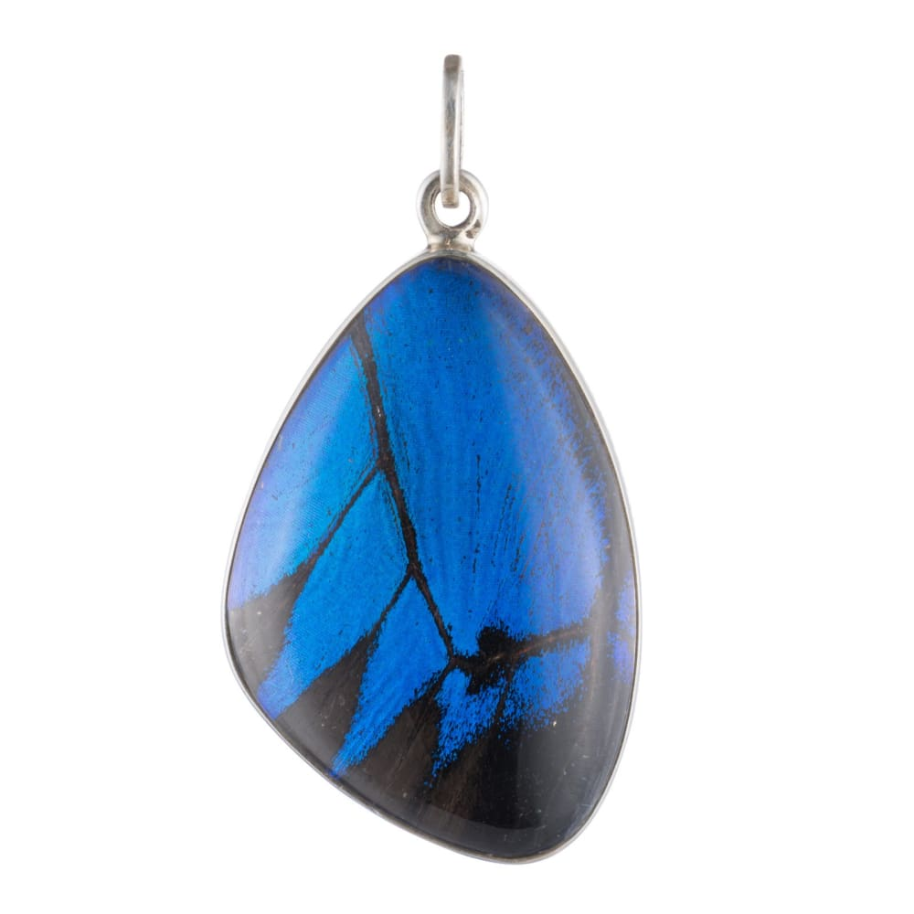 Cobalt Hindwing Pendant - Golconda Jewelry