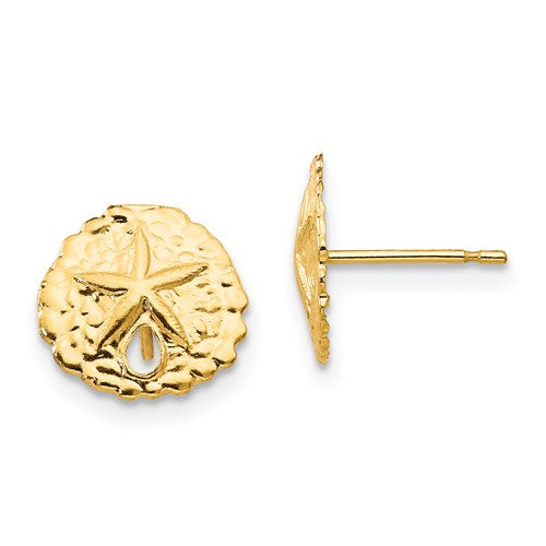 14K Yellow Gold Sand Dollar Stud Earrings