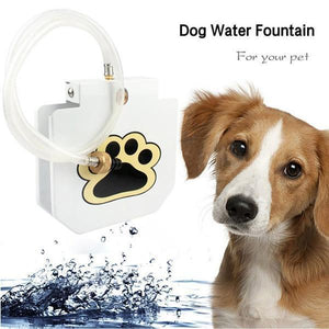Outdoor Water Cooler For Dogs
