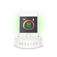 BTL20001 BREATHE|Smart 2 air quality monitor