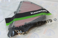Kawasaki 11013-0016 ELEMENT-AIR FILTER 07 08 ZX6R ZX600P