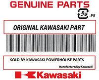 Kawasaki 2013-2020 Youth Mini KFX 50 KFX50 Carburetor Assembly 15004-Y006 New OEM