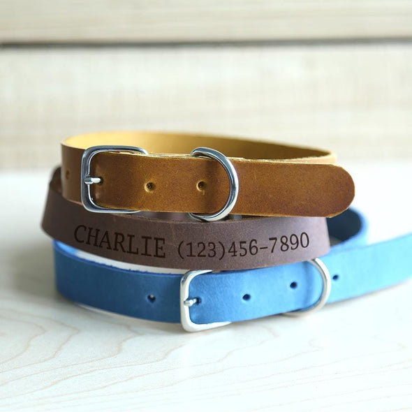 Personalized Genuine Leather Pet ID Collar