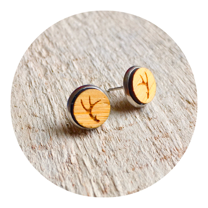 Antler Bezel Stud Earrings