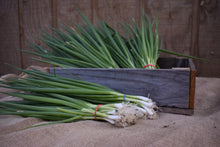Load image into Gallery viewer, Green Onions