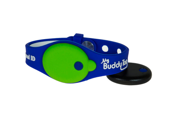 Buddy Tag with Royal Blue/Green Silicone Wristband