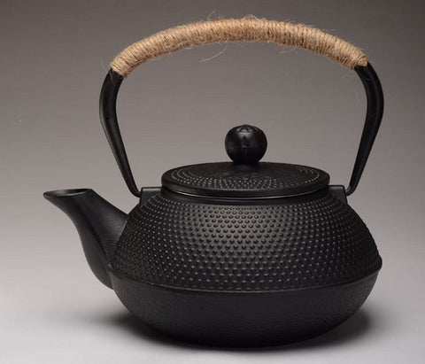 Japanese Tetsubin Cast Iron Teapot - YannyExpress  - 1