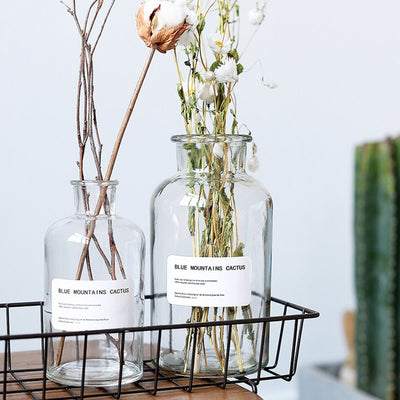The Lucy Jar-Buy-Propagation-Station-Online-Cooper-And-Smith