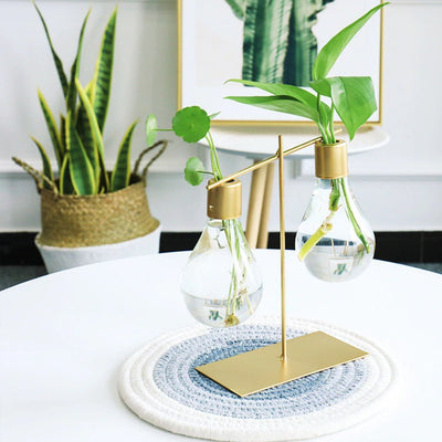Zara Propagation Bulb Duo-Buy-Propagation-Station-Online-Cooper-And-Smith