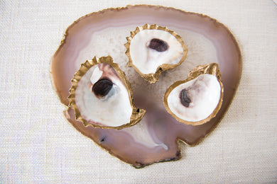 Oyster Shell Dish