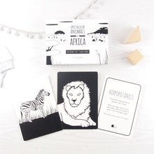 Load image into Gallery viewer, The Little Black & White Book Project Black & white animal theme flash cards for babies and toddlers