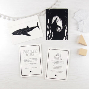 The Little Black & White Book Project Interactive black & white animal flash cards for babies and toddlers