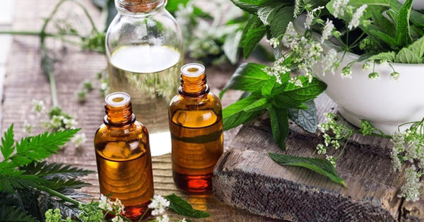 Best Essential Oil for Fever Blisters
