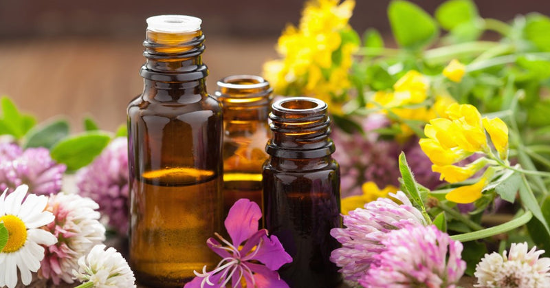 best essential oil for bruises