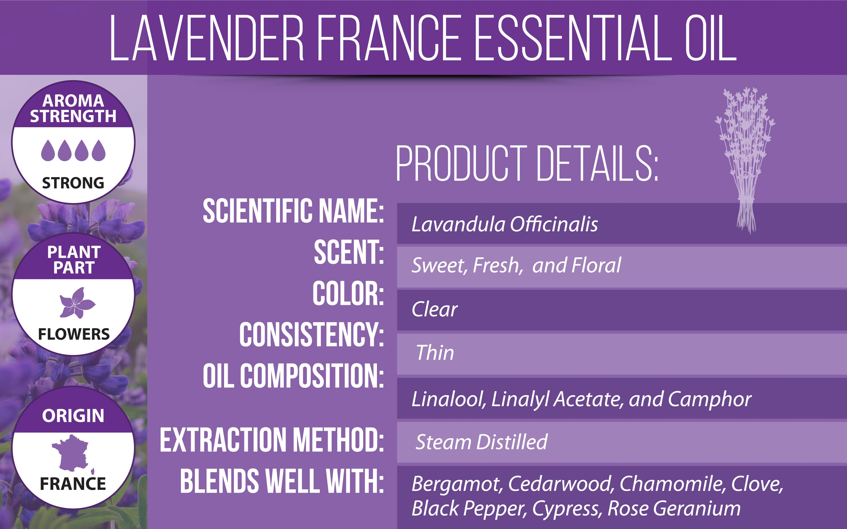 French Lavender Essential Oil Product Details