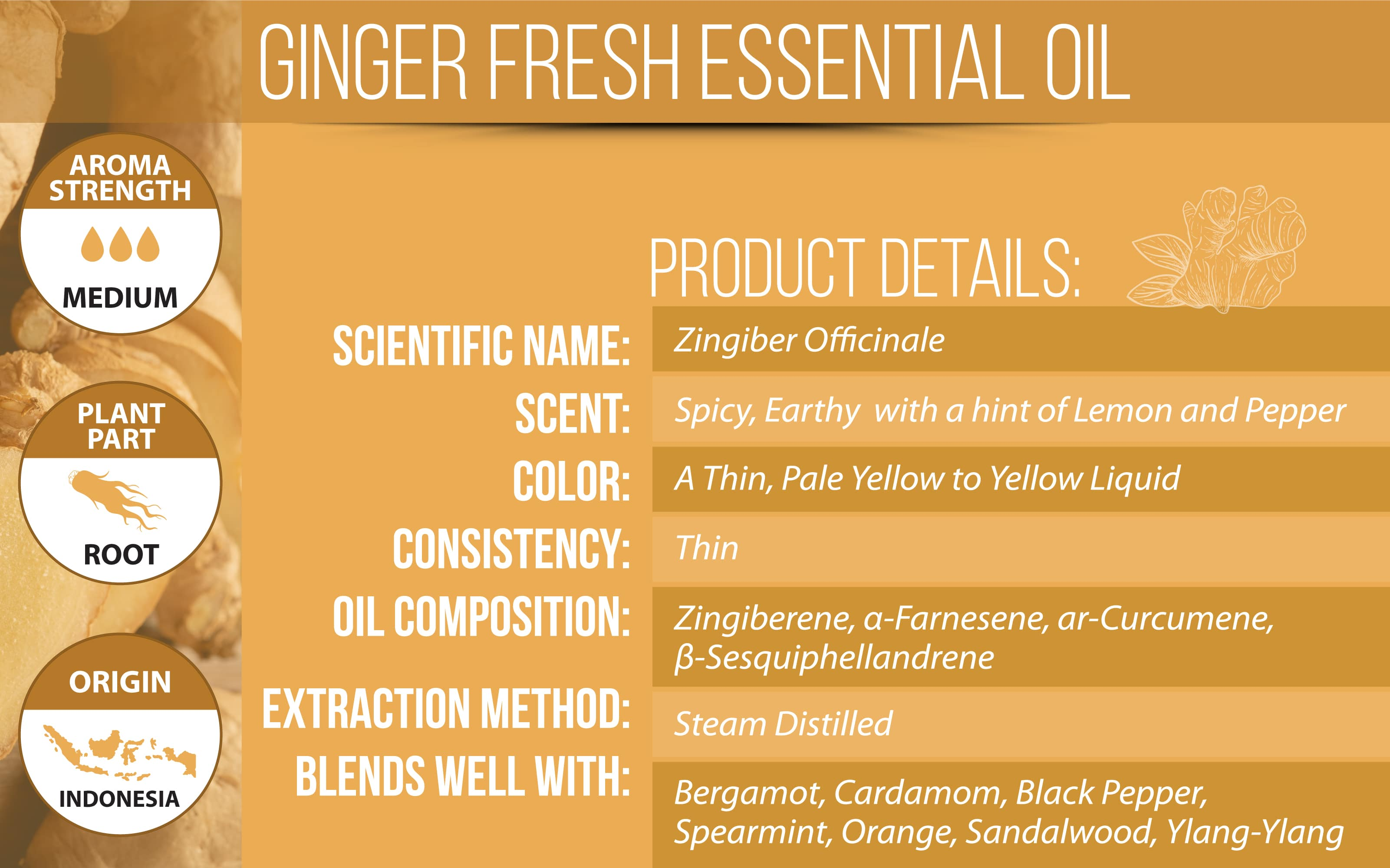 Ginger Essential Oil Product Details