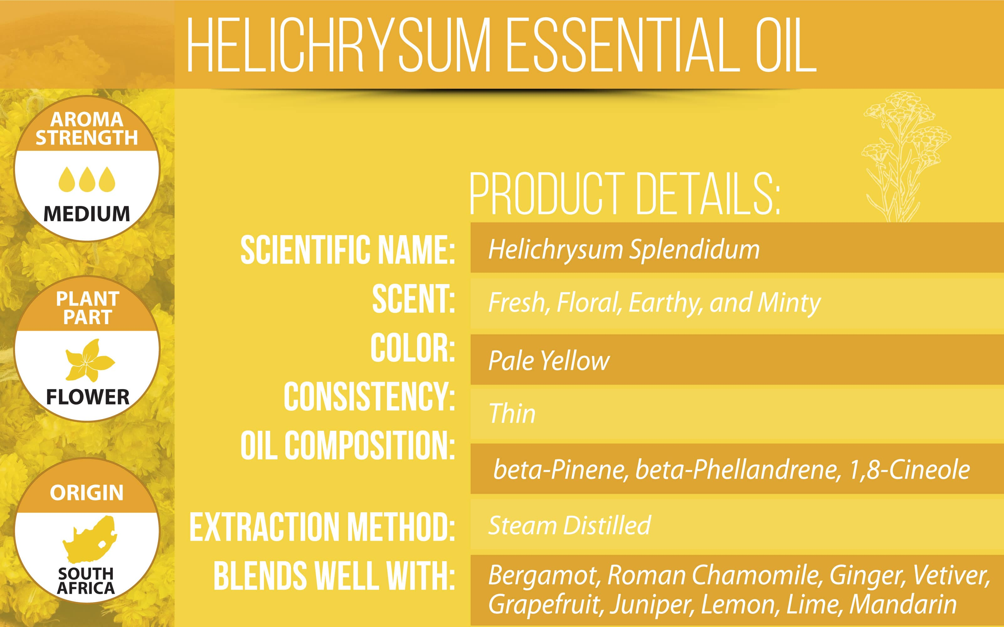 Helichrysum Essential Oil Product Details