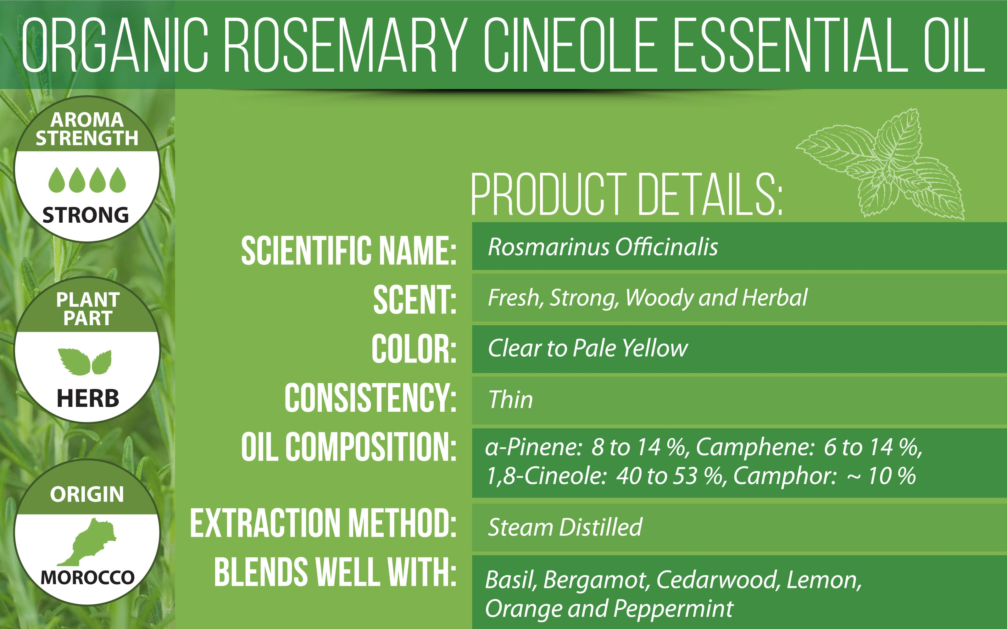 Organic Rosemary Essential Oil Product Details