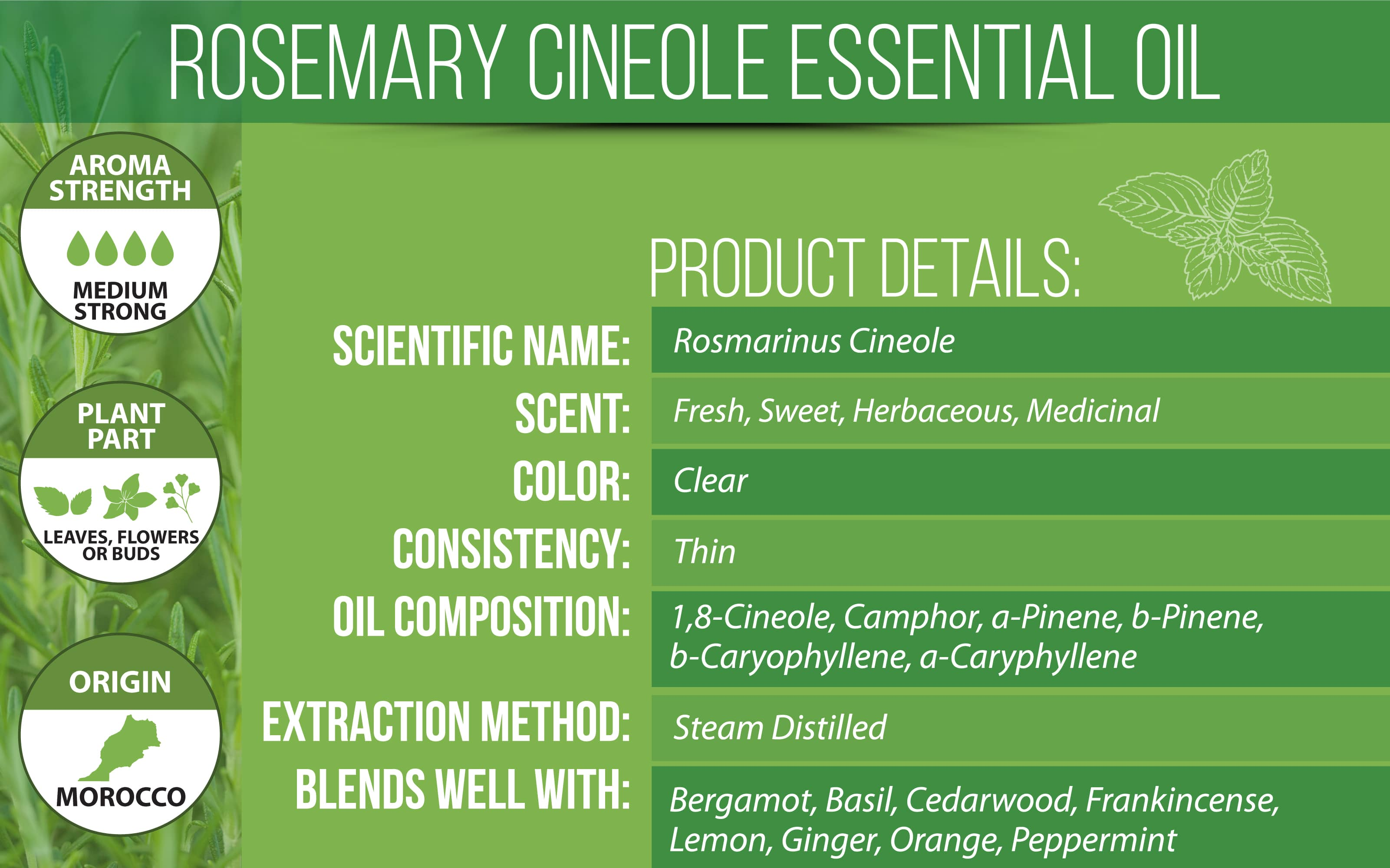 Rosemary Essential Oil Cineole Product Details