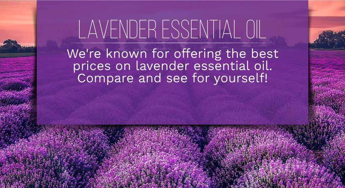 Lavender Essential Oil Dogs
