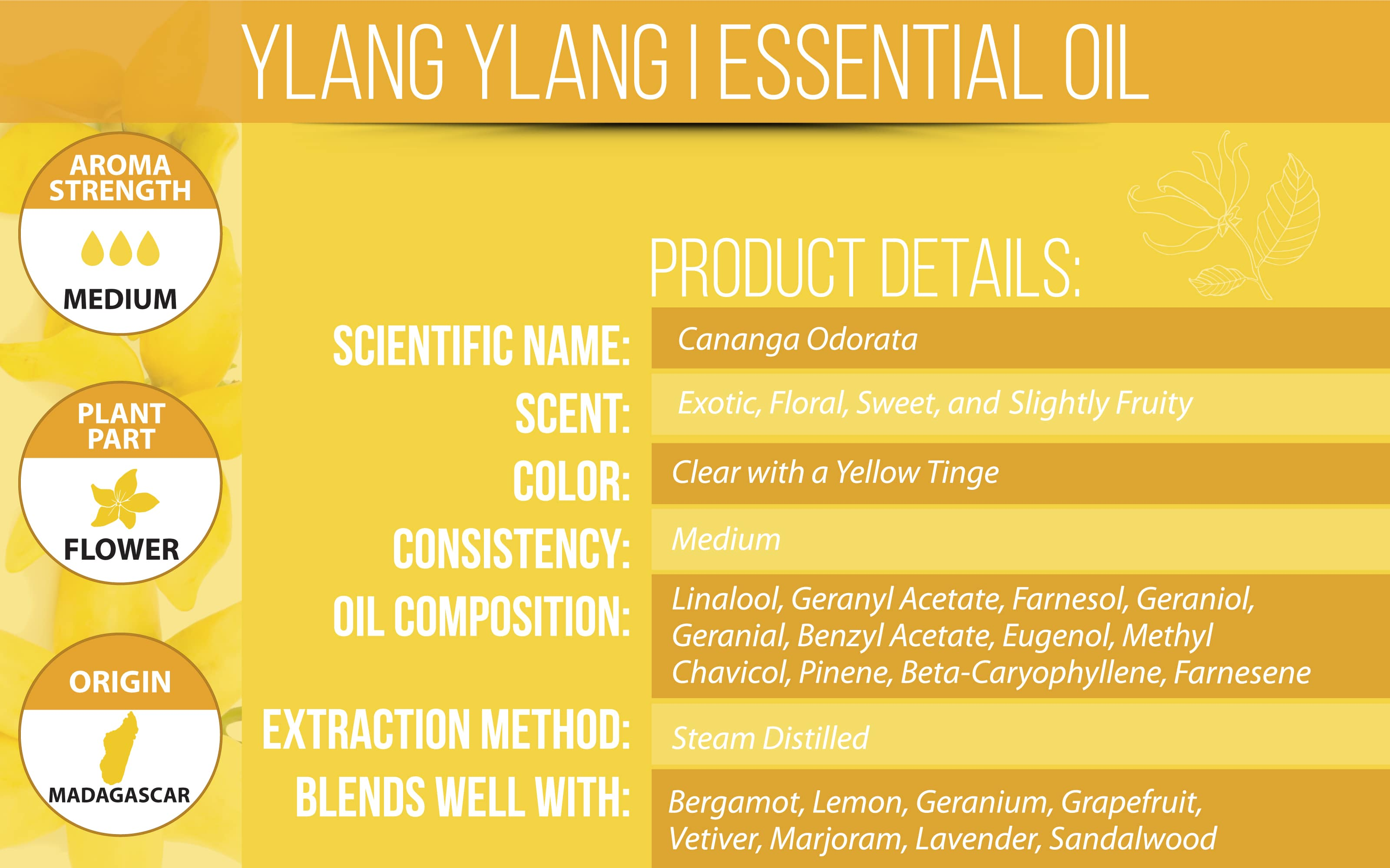 Ylang Ylang Essential Oil Product Details