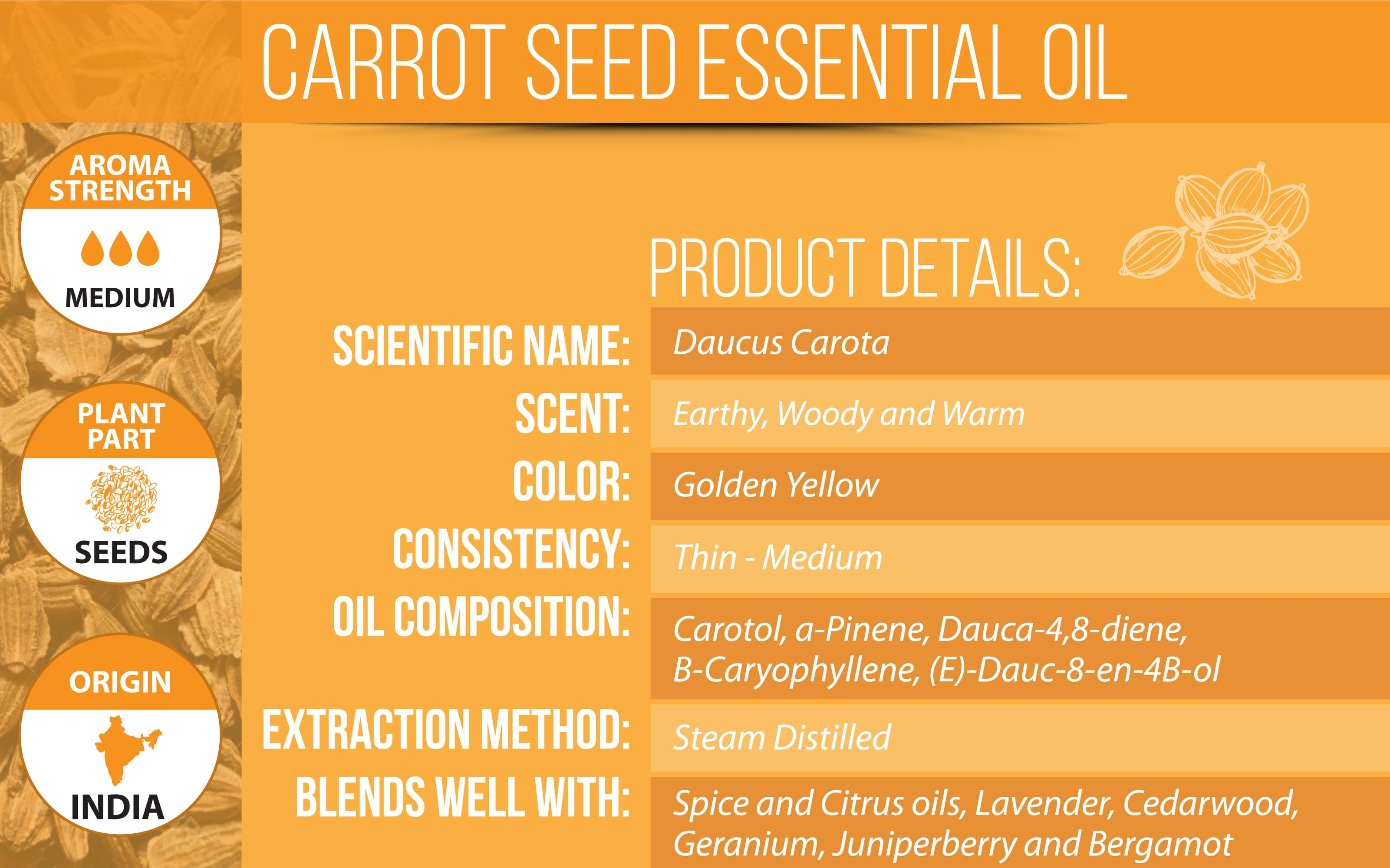 carrot seed essential oil details