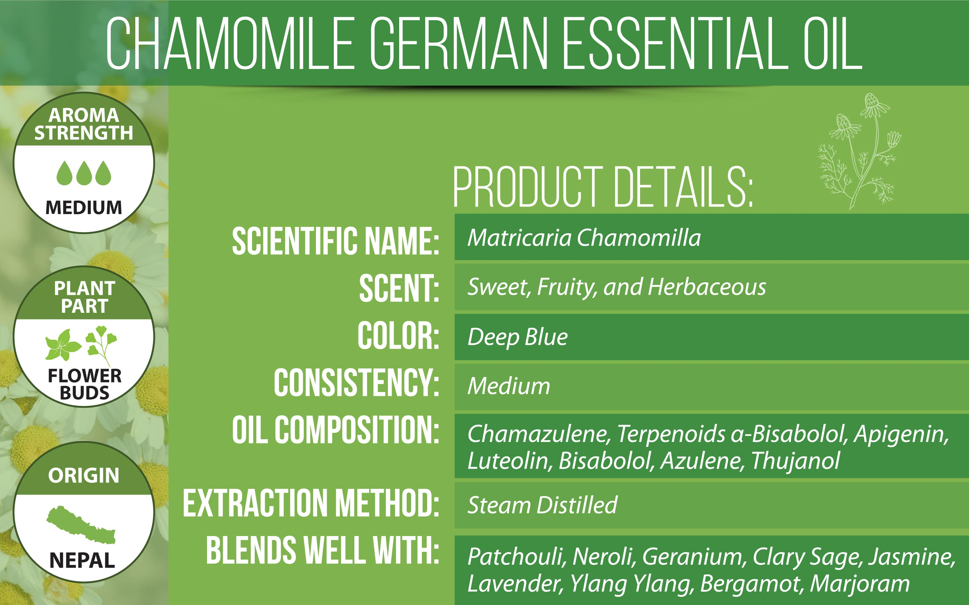 german chamomile essential oil product details