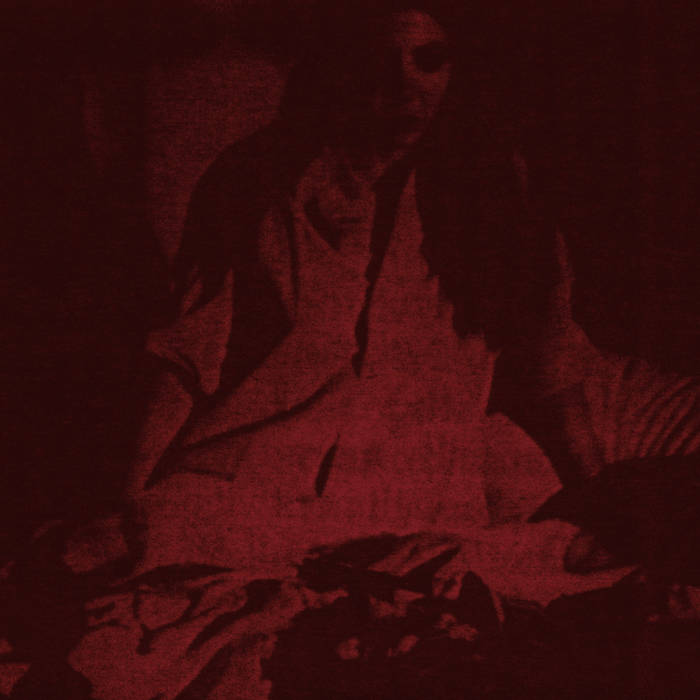 The Cherry Point // Night of the Bloody Tapes CD