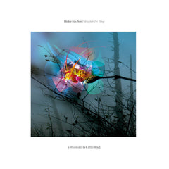 Blinkar från Norr // Metaphors For Things 2xLP