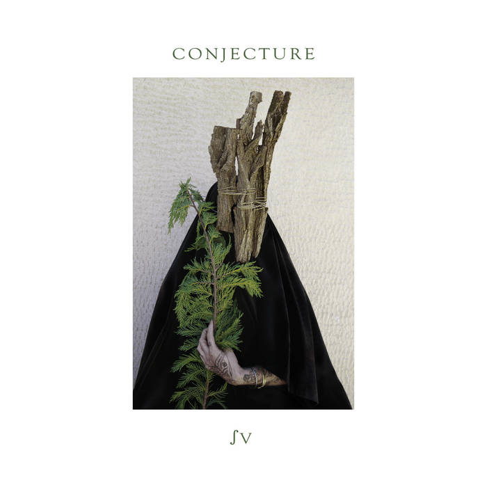 Conjecture // ∫V TAPE