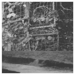 Cremation Lily // The Processes and Instruments of Normal People; Trying and Failing, Falling and Water Running LP