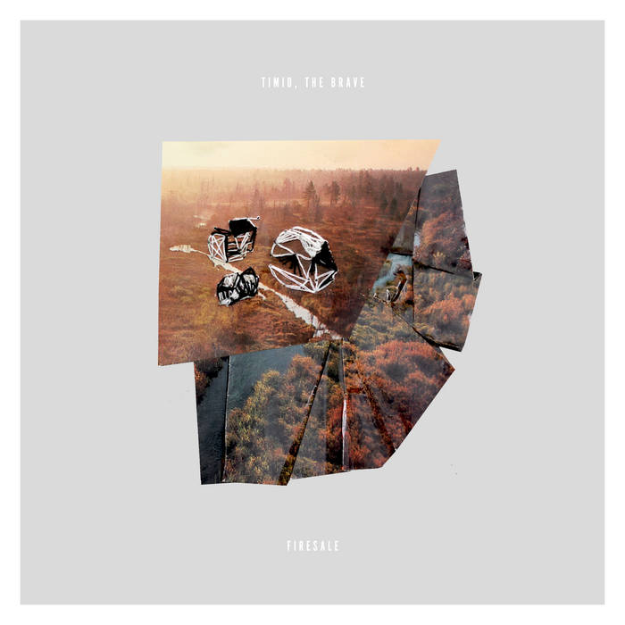 Timid, the Brave // Firesale CD