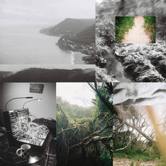 Low Flung // The Landscape Has Become A Bed CD