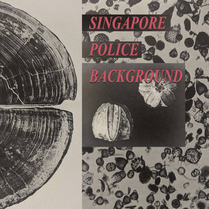 Singapore Police Background // s/t TAPE