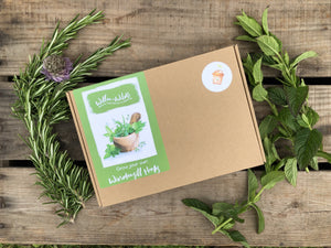 Grow Your Own Windowsill Herbs Kit