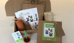 Grow your Own Cactus Party Bags