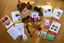 Load image into Gallery viewer, Willow & Wild Box - SiblingBox Size Nature Craft & Gardening Kit