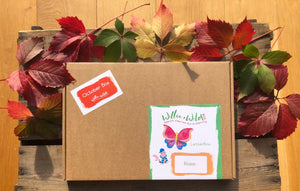 Willow & Wild Box - SiblingBox Size Nature Craft & Gardening Kit