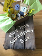 Monthly Play Tray Subscription Box