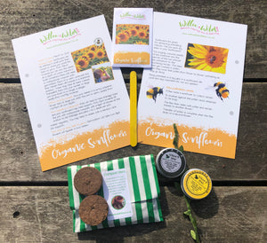 Grow your own Sunflower Seed & Natural Playdough Kit