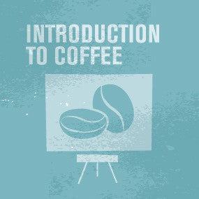 Introduction to Coffee (Online) - CoffeeNutz®