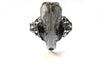 Taxidermy Mink Skull Filigree Bangle - Antique Silver