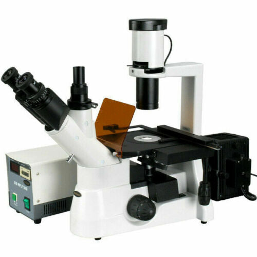 40x-1000x Plan Phase Contrast Culture Inverted Fluorescence Microscope
