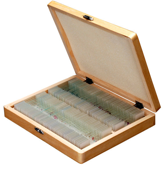 100pc Prepared Glass Microscope Slides in Wood Case with Plant, Fungus, Insect and Mammal Specimens